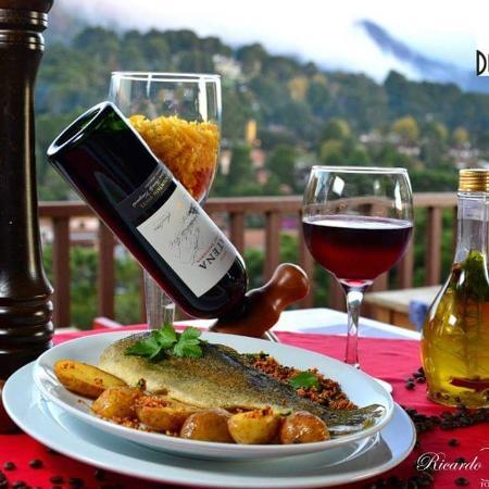 Passeio BeeMer – Bate & Volta – Monte Verde